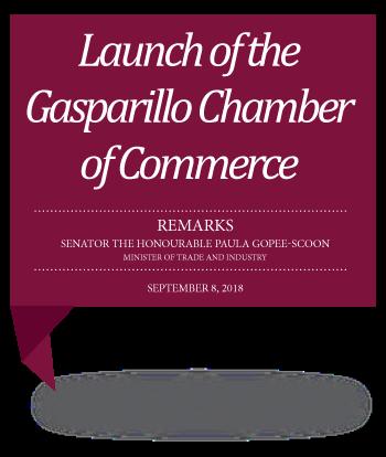 08-09-18-Gasparillo